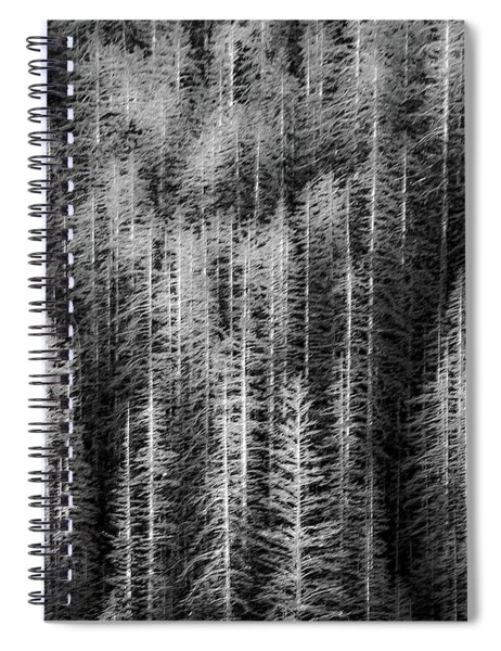 Sitka Abstraction Spiral Notebook