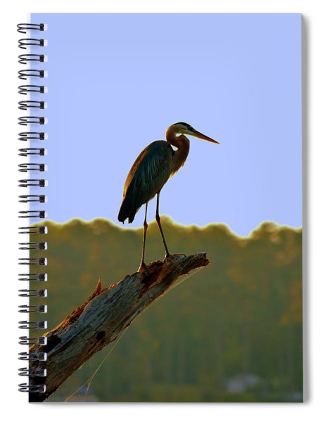 Sitting High On The Log Spiral Notebook
