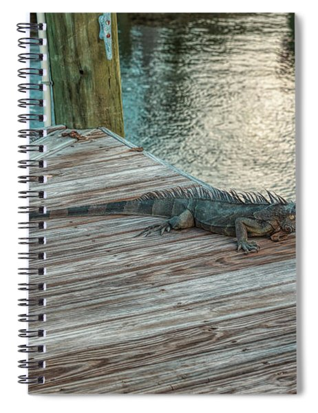 Sitting On The Dock Spiral Notebook