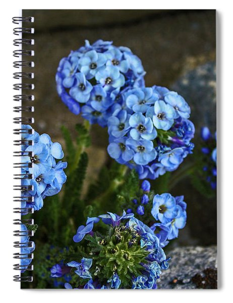 Sky Pilot, How High Can You Fly Spiral Notebook