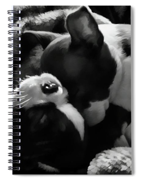 Sleeping Beauties - Boston Terriers Spiral Notebook