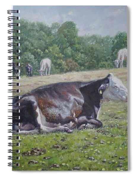 Sleeping Cow On Grass On Sunny Day Spiral Notebook