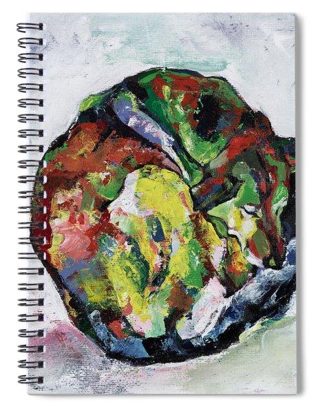 Sleeping Dog_3 Spiral Notebook