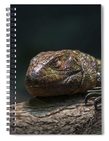 Sleeping Dragon Spiral Notebook