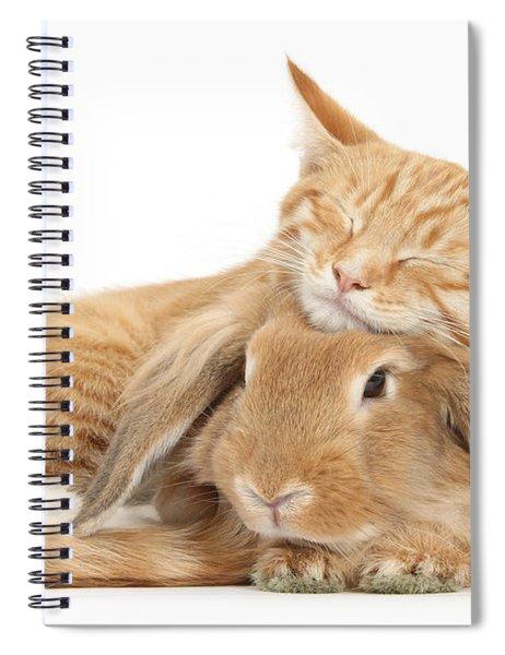 Sleeping On Bun Spiral Notebook