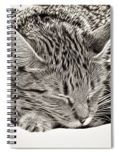 Sleeping Tabby Spiral Notebook