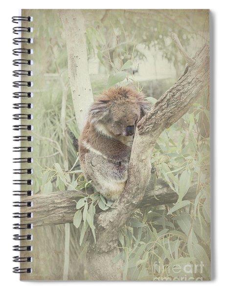 Sleepy Koala Spiral Notebook