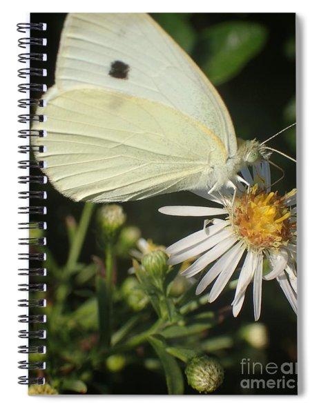 Sm Butterfly Rest Stop Spiral Notebook