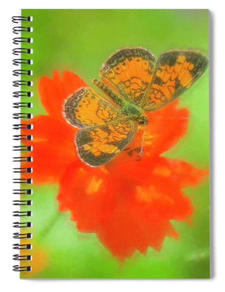 Small Orange And Black Moth On Red Flower. Spiral Notebook