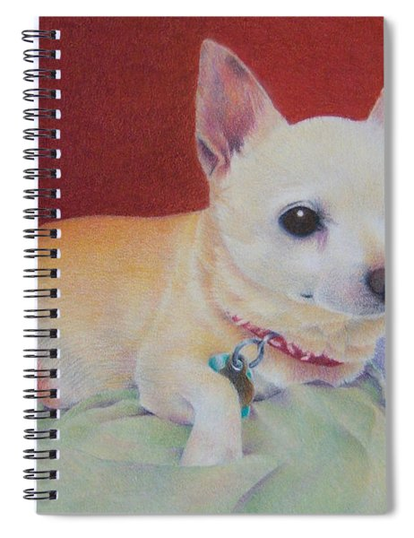 Small Package Spiral Notebook