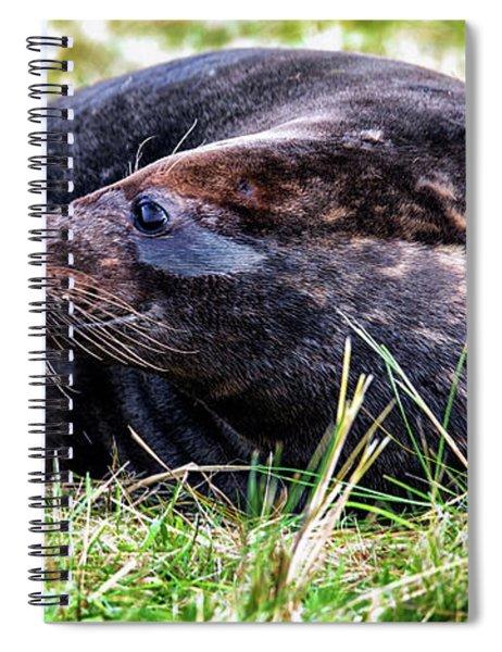 Smiler Spiral Notebook