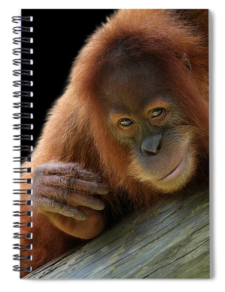 Cute Young Orangutan Spiral Notebook