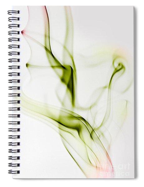 Smoke Wings Spiral Notebook