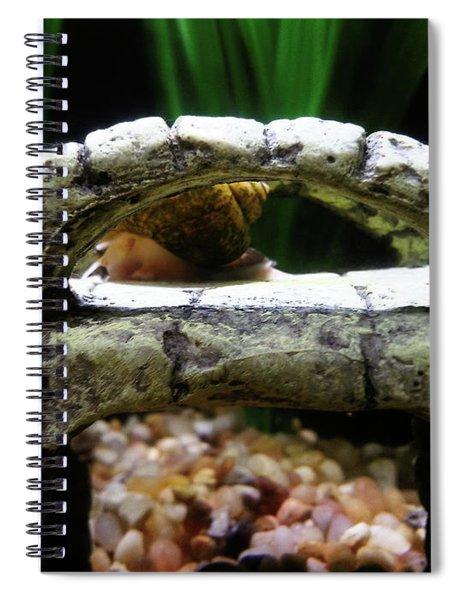 Snail Over A Bridge Spiral Notebook