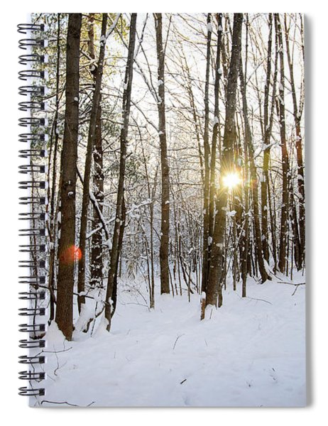 Snow And Trees Spiral Notebook