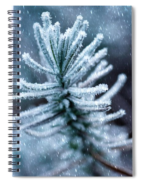Snow Cover Pine Spiral Notebook