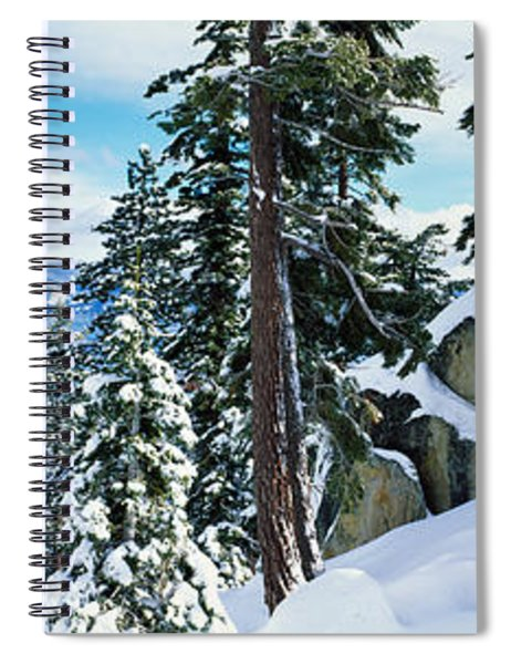 Snow Covered Trees On Mountainside Spiral Notebook