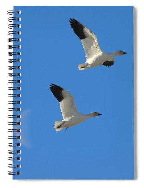 Snow Geese Moon Spiral Notebook
