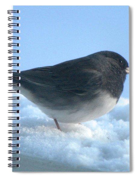 Snow Hopping #1 Spiral Notebook