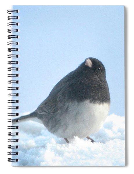 Snow Hopping #2 Spiral Notebook