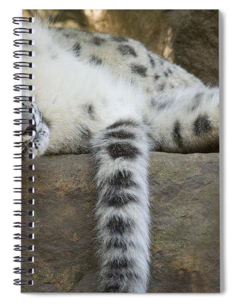 Snow Leopard Nap Spiral Notebook