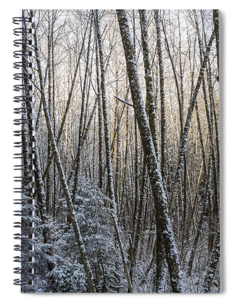 Snow On The Alders Spiral Notebook