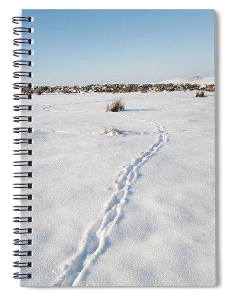 Snow Tracks Spiral Notebook