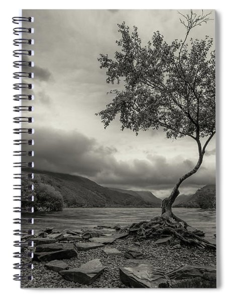 Snowdonia Wales The Lonely Tree Spiral Notebook