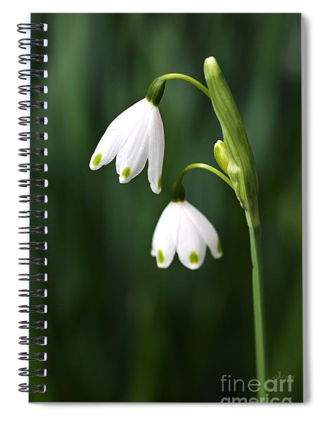 Snowdrops Painted Finger Nails Spiral Notebook