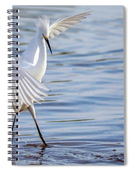Snowy Egret 0322-111217-1cr Spiral Notebook