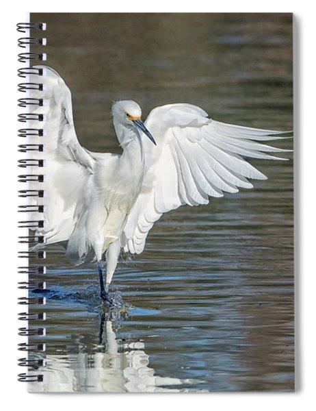 Snowy Egret 9896-022418-1cr Spiral Notebook