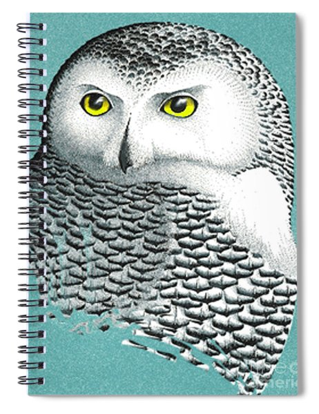 Snowy Owl Portrait 2 Spiral Notebook