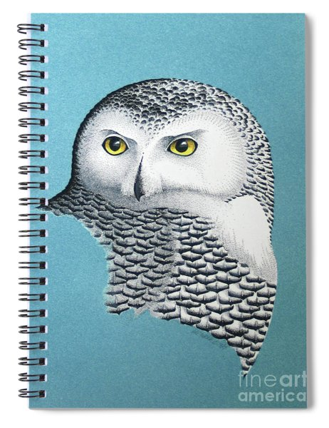 Snowy Owl Portrait 3 Spiral Notebook