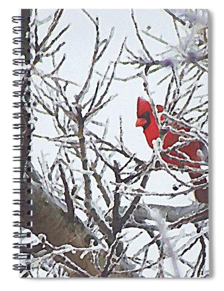 Snowy Red Bird A Cardinal In Winter Spiral Notebook