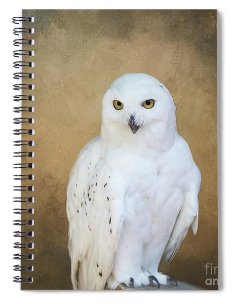 Snowy White Spiral Notebook