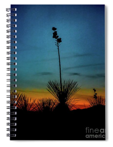 Soaptree Yucca At Sunset Spiral Notebook
