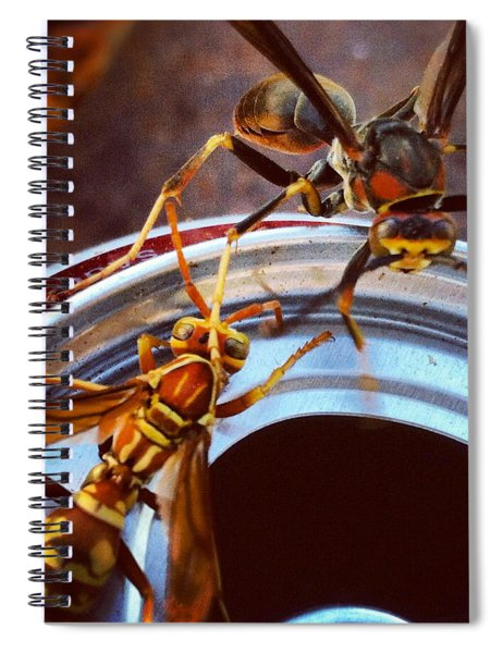 Soda Pop Bandits, Two Wasps On A Pop Can  Spiral Notebook