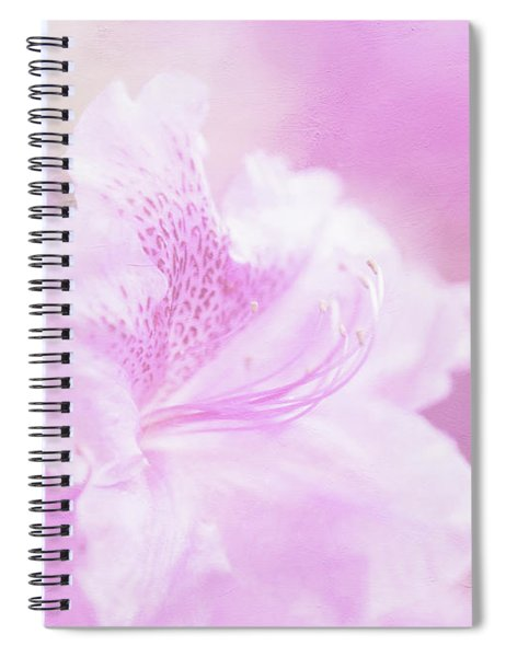 Soft And Lovely Pink Rhododendrons  Spiral Notebook