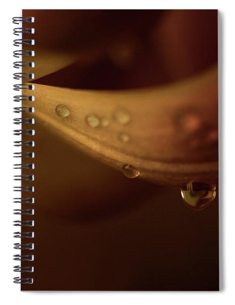 Soft And Smooth Spiral Notebook