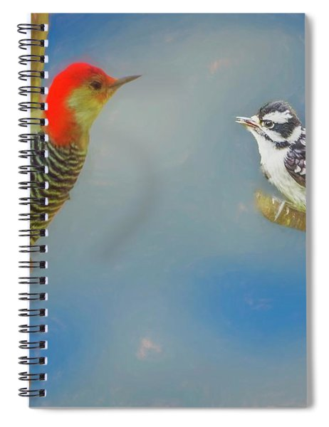 Soft Art Portrait Of Red Bellied Woodpecker And A Young Downy Wo Spiral Notebook