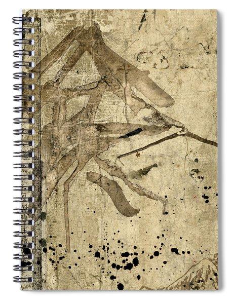Soft Brown Calligraphy Spiral Notebook