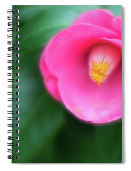 Soft Focus Flower 1 Spiral Notebook
