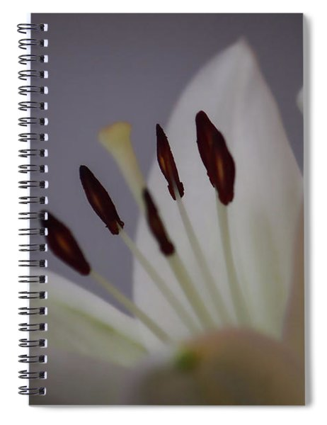 Soft Lily Spiral Notebook