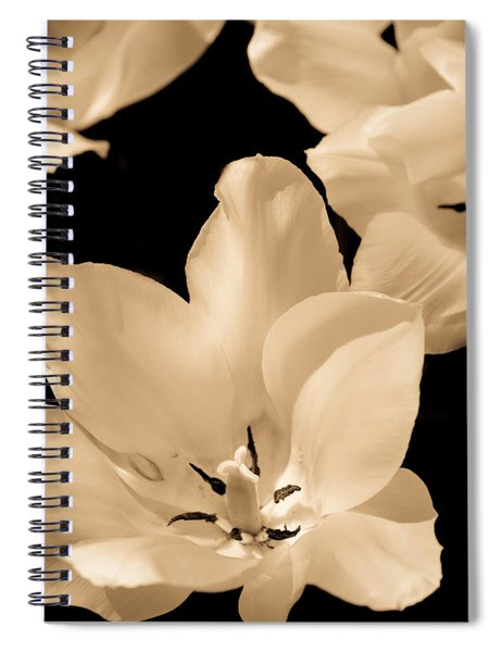 Soft Petals Spiral Notebook