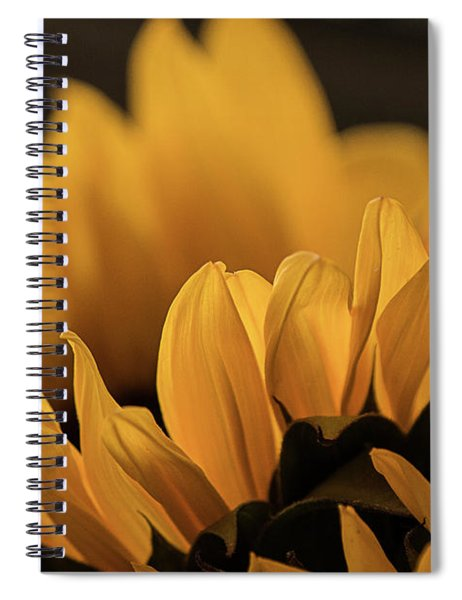 Soft Summer Light Spiral Notebook