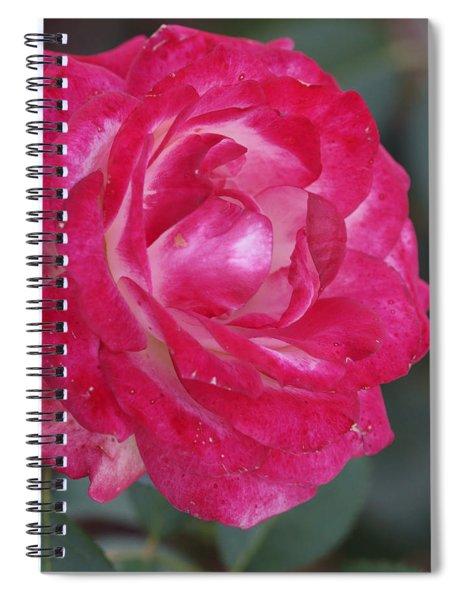 Softness 2 Spiral Notebook