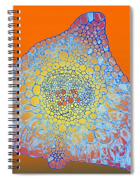 Solar Cells Spiral Notebook