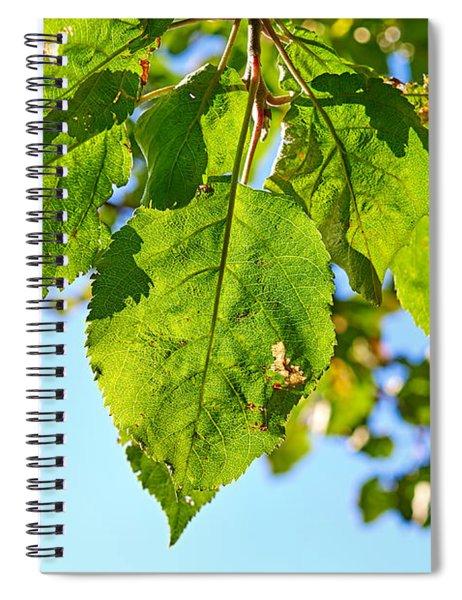 Solar Panels Spiral Notebook