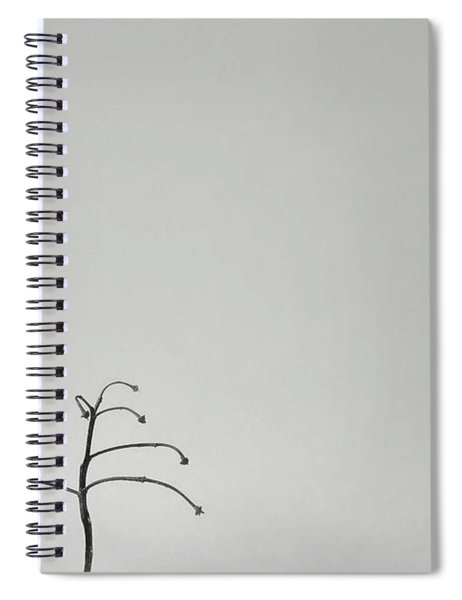 Solitary Spiral Notebook