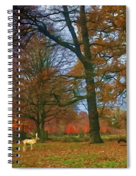 Solo Deer Spiral Notebook